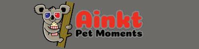 Ainkt – Pet Moments